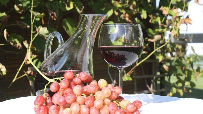 Víno franšízový byznys
